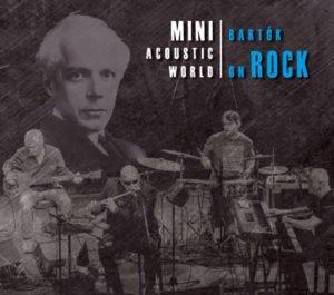 mini_acoustic